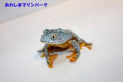 20111208-1128c1_jpg.jpg