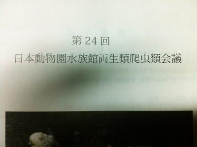 20121130-11302.jpg