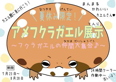 20160721-07213.jpg
